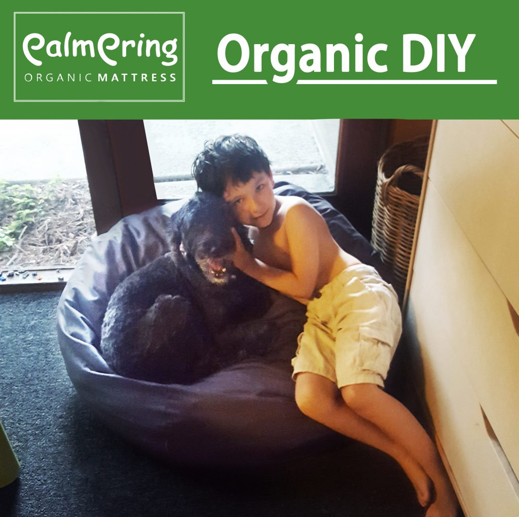 Cassy Aoyagi Was Interested In Making An Organic Alternative To Standard Bean  Bag Chairs For Her Son And His Dog. Using Organic Latex Scraps From  Palmpring, ...