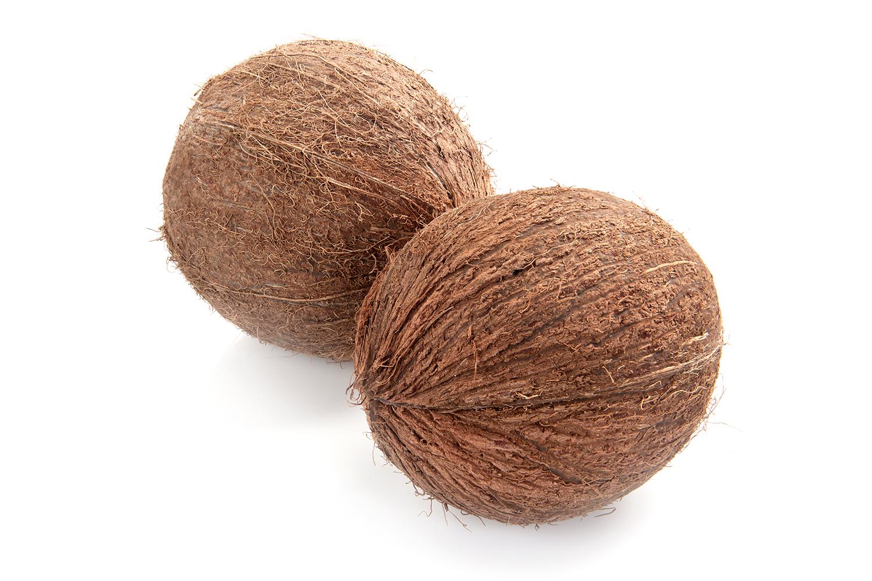 Palmpring Mattress The Highest Quality Organic Materials
